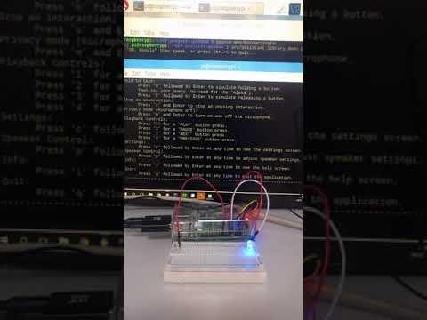AlexaとGoogle Assistantの両方が召喚されているRaspberry Pi