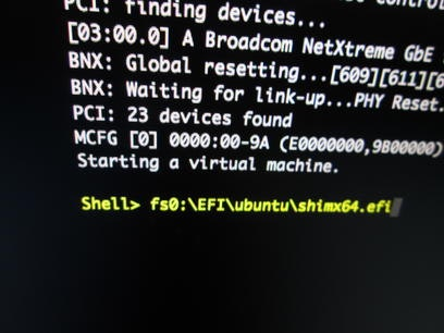 EFI ShellからBitVisorを起動したあとの画面