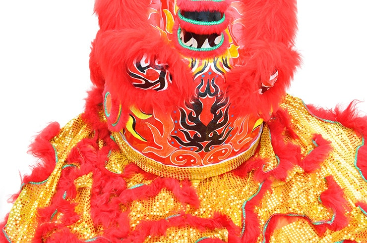 Chinese Lion Costume