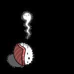 寿司ゆき:faint