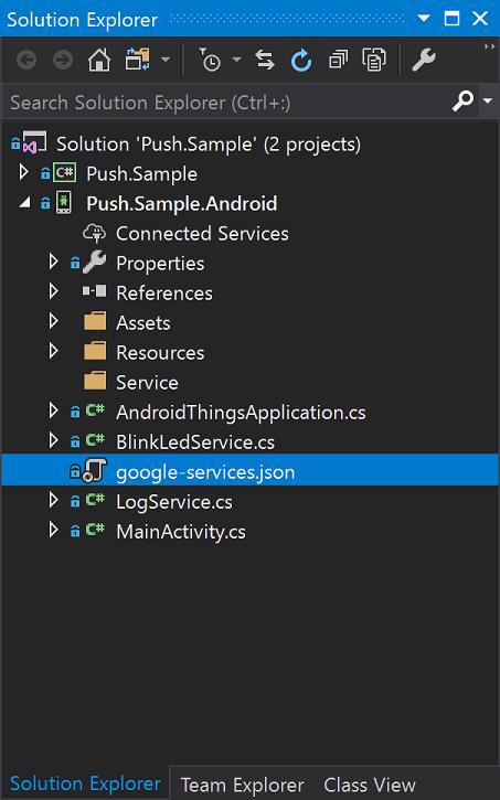 Google-Service-Json