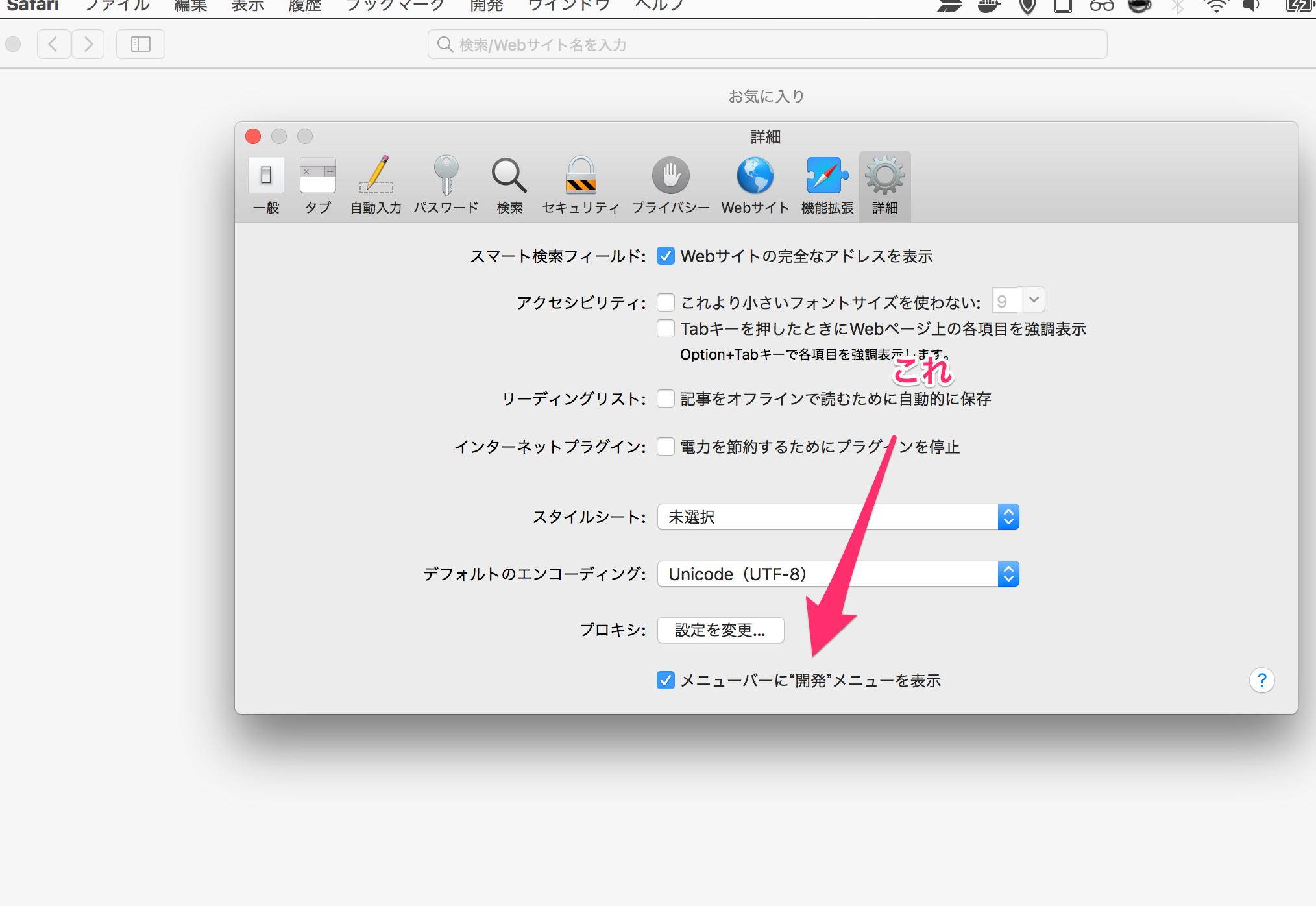 Safari 開発メニューを表示