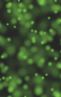 スクリーンショット 2016-05-20 1.06.25.png