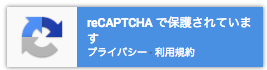 reCAPTCHA_v3_02.png
