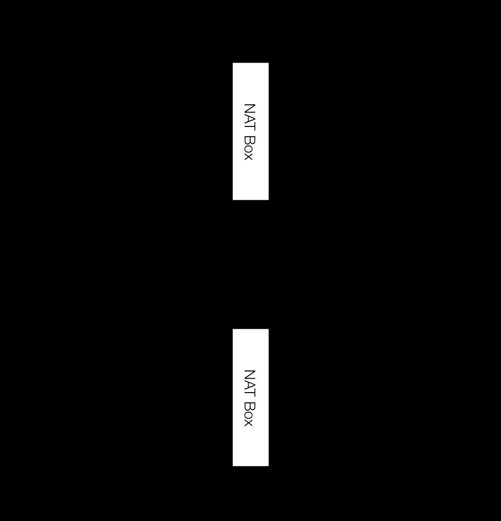 duplicated_rtp.png