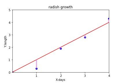 radish2_2.png