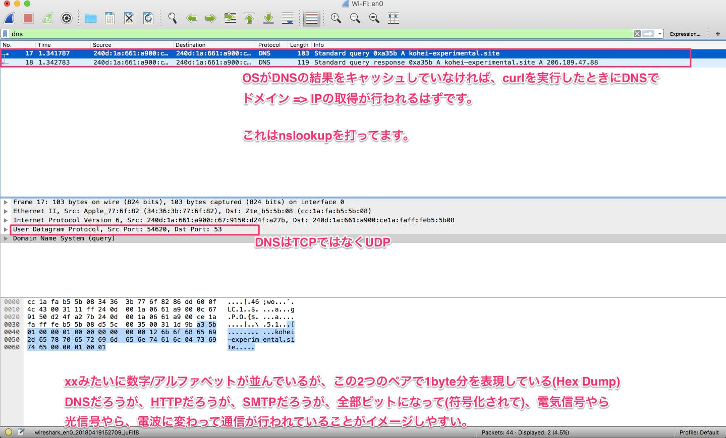 curl_dns.png