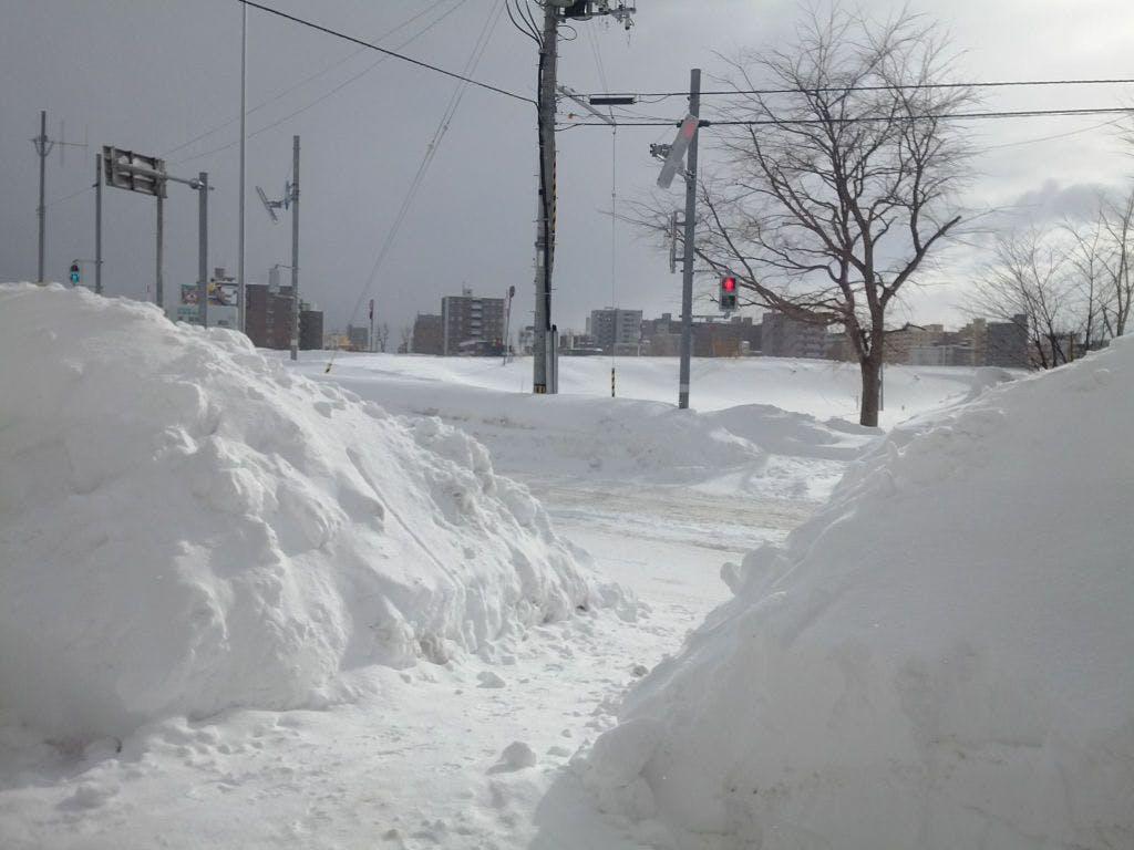 札幌の冬の日常的光景