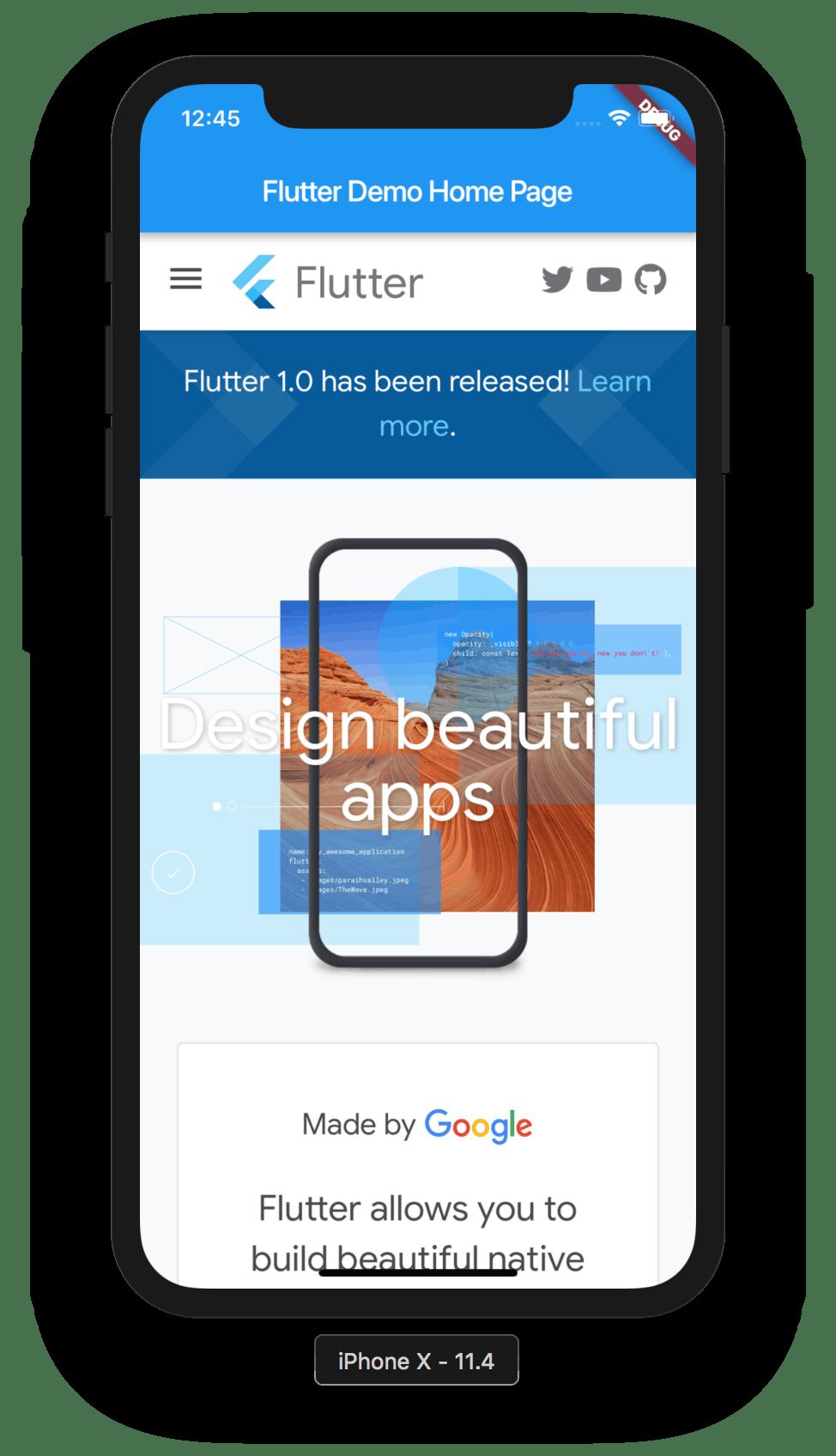 Webview Flutter Example