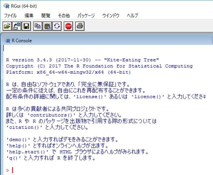 R_Start_01_Rgui.jpg