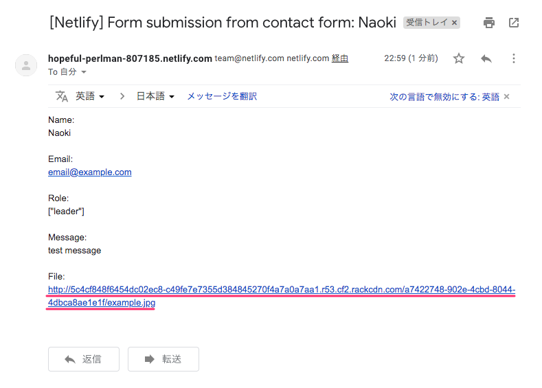 netlify-form-42.png