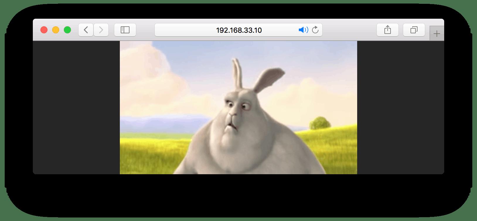 Safariから`video/playlist.m3u8`にアクセス