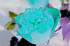 rose-RGBA-negate6.png