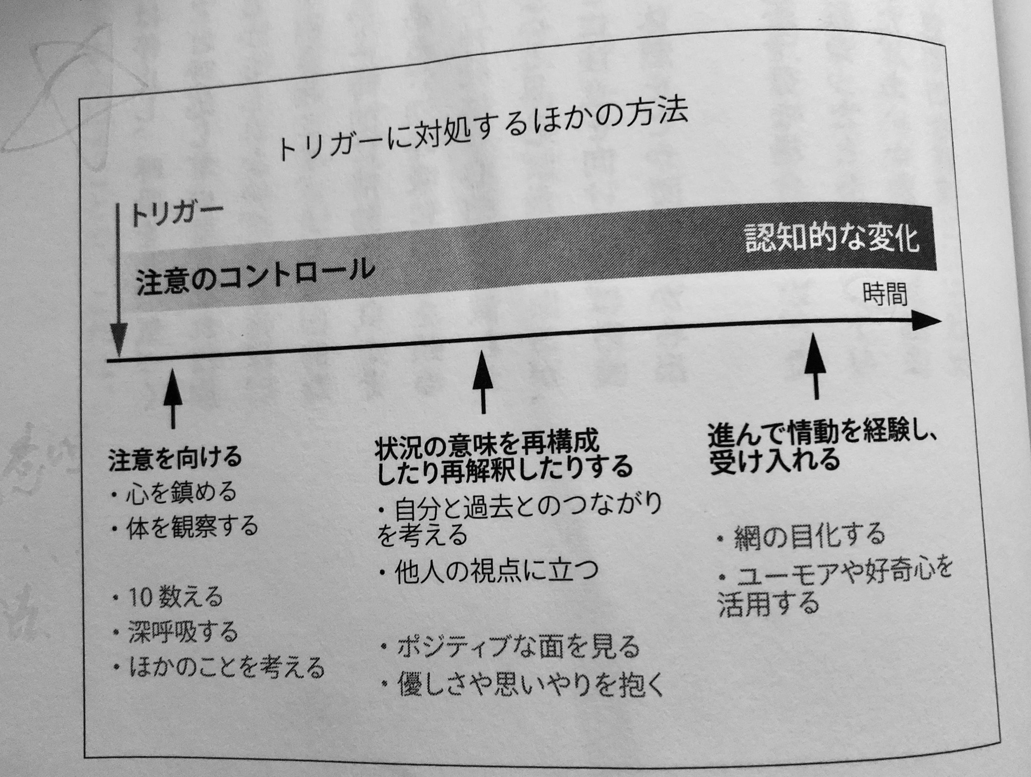IMG_2181 2.JPG