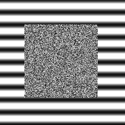 ゼブラフィッシュの模様形成をシミュレーションしてみる Qiita