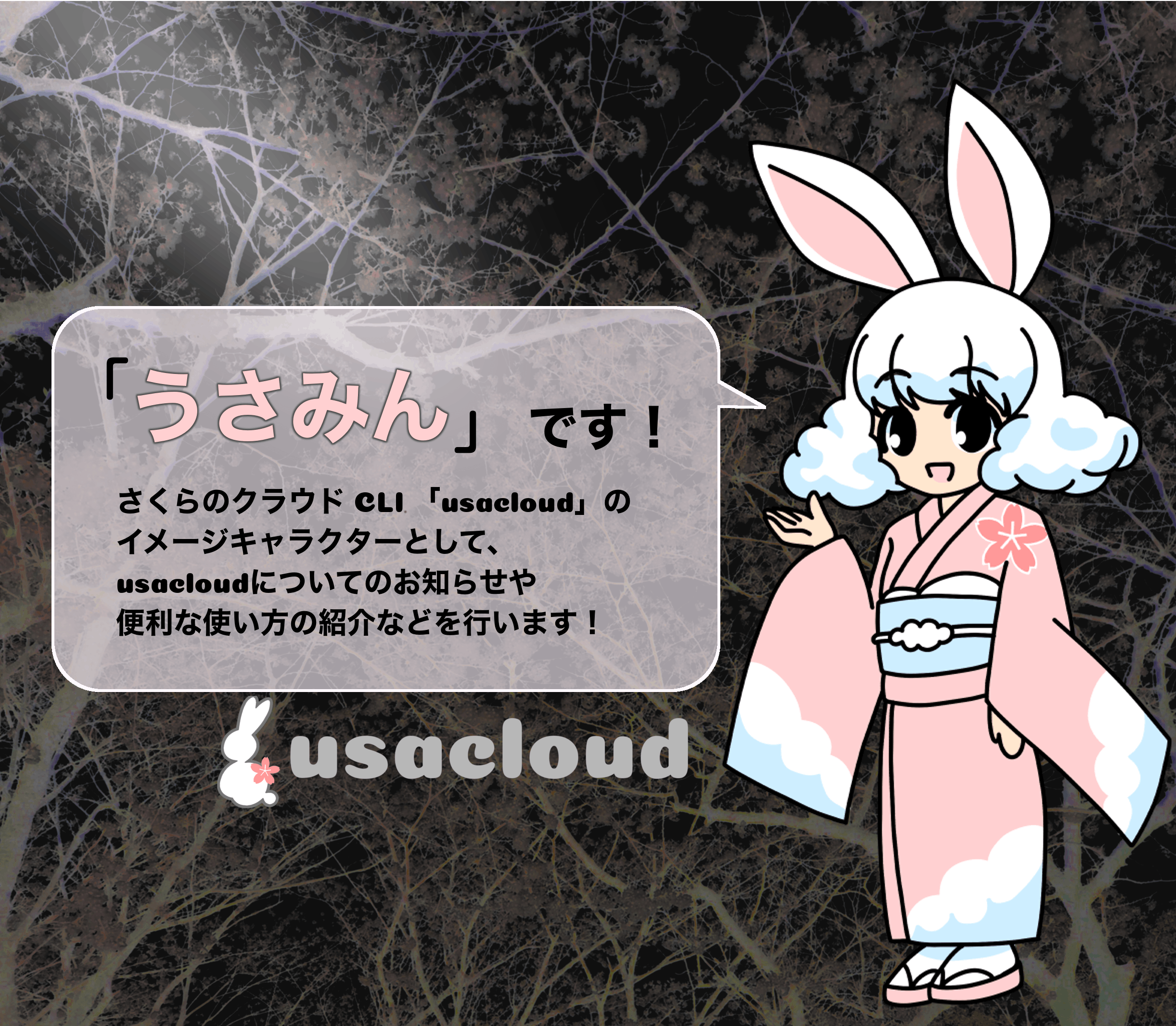 usamin-introduction.png