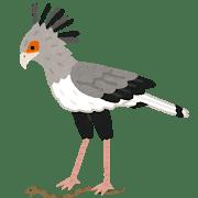 bird_hebikuiwashi.png
