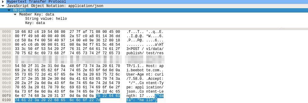 valid_packet.JPG