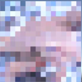 キャプチャ156.PNG