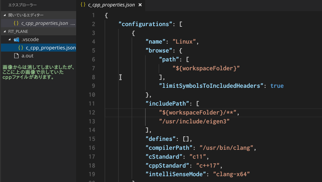 vscode_after_setup_includepath.png