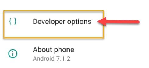 19_developer-options.png