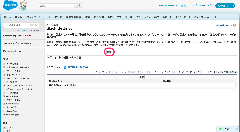 カスタム設定_Slack_Settings___Salesforce_-_Developer_Edition.png