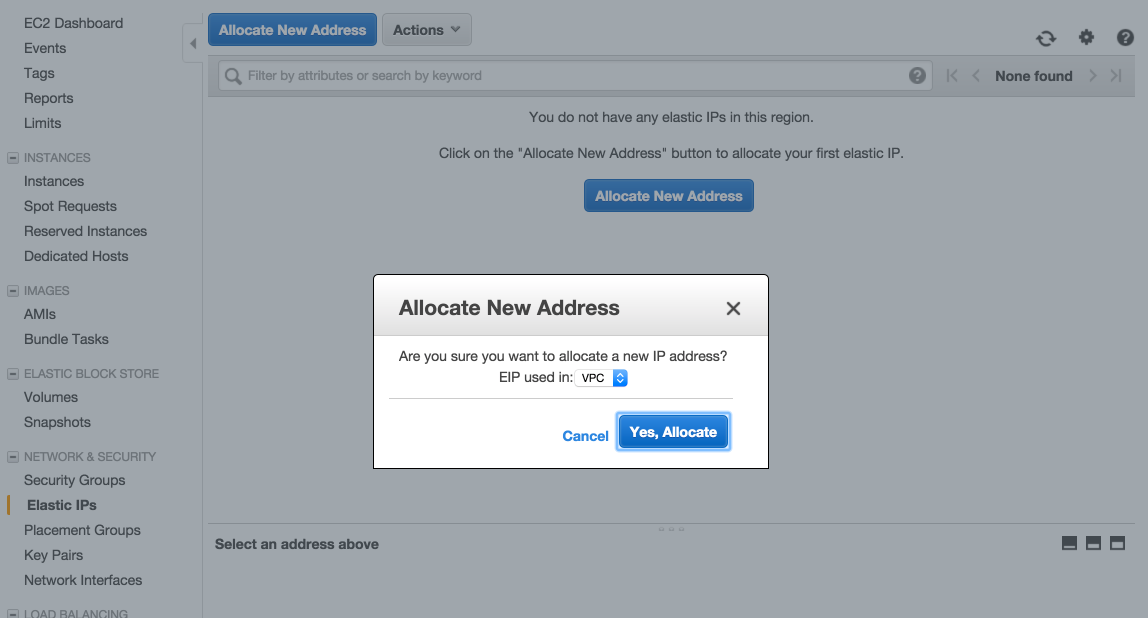 allocate-new-address.png
