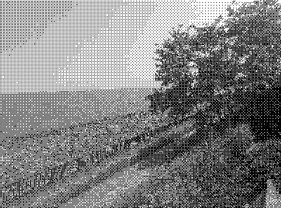 dither_gray.png