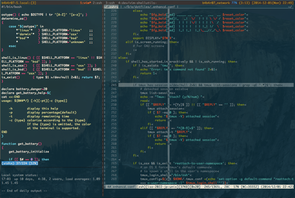 vim_on_zsh_on_tmux.png