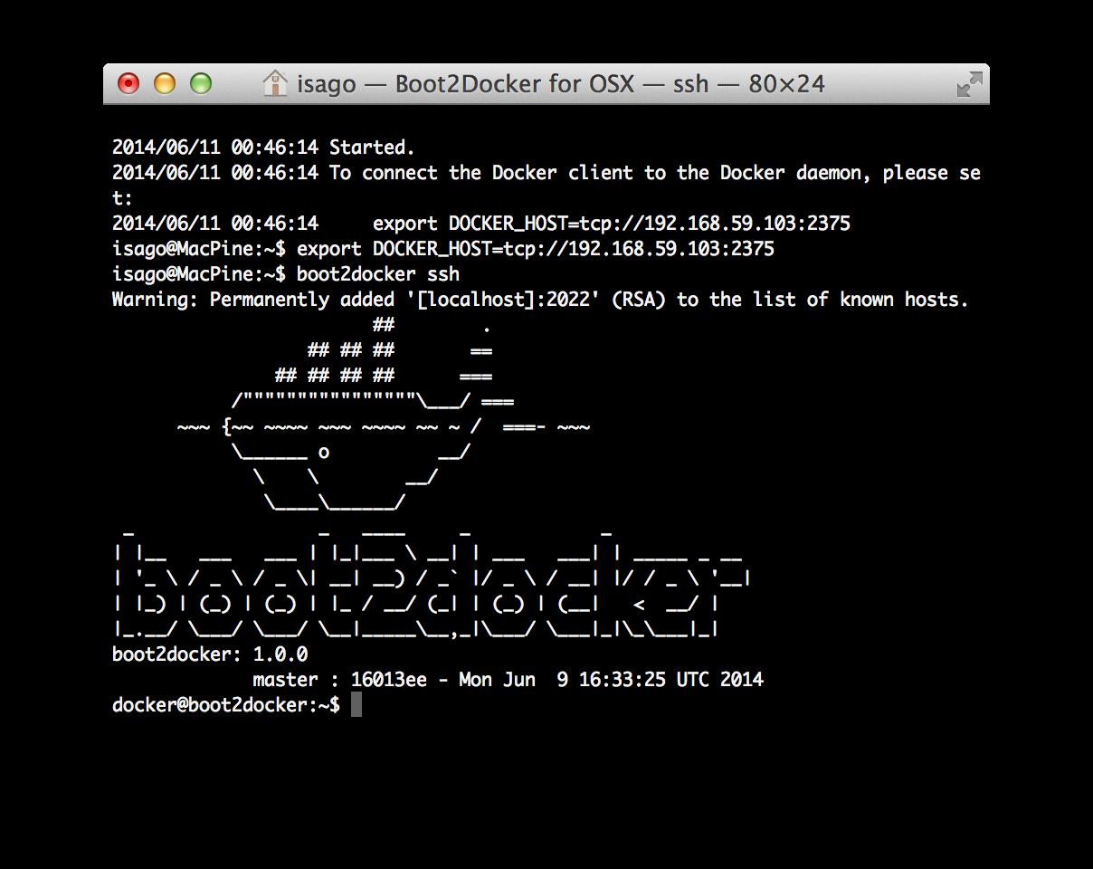 docker起動画面