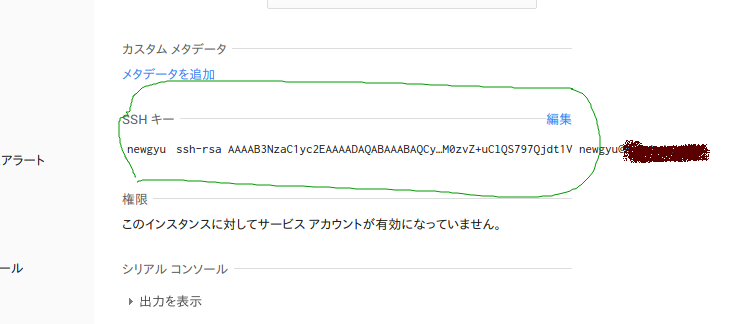 Google Developers Console.png
