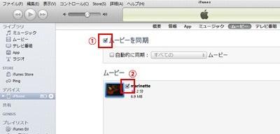 DVDをiPhoneで見る.jpg