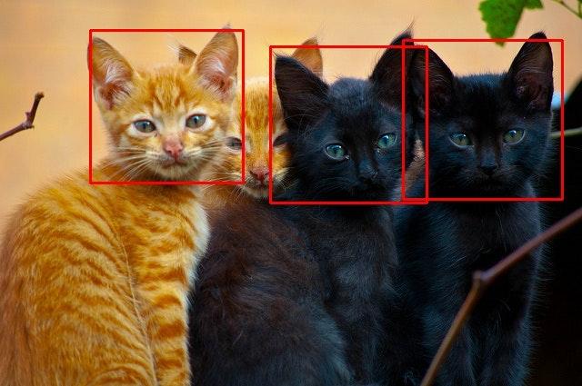 detect_5610691368_f59529e648_z.jpg