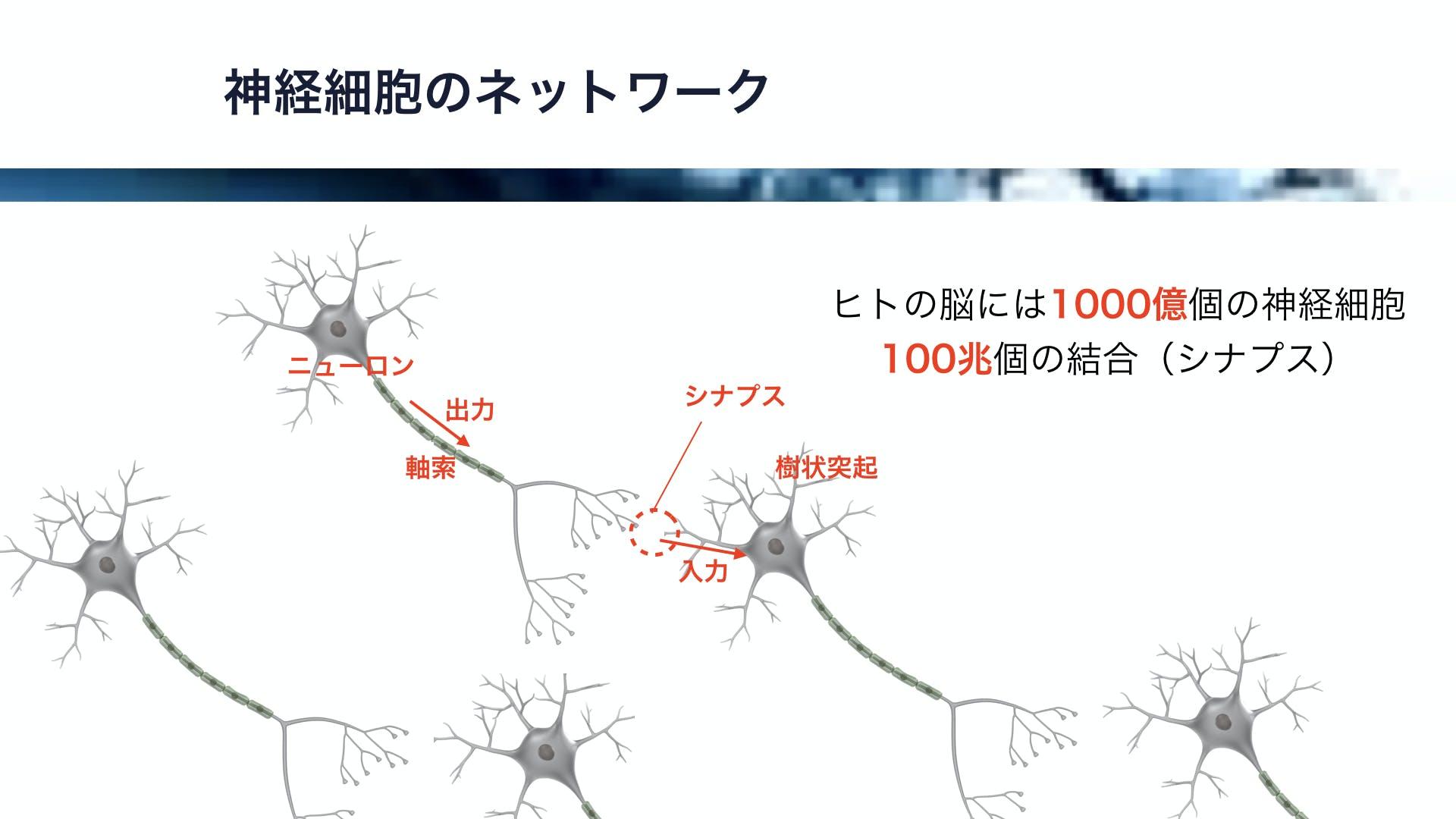 iOSDC2017.012.jpeg