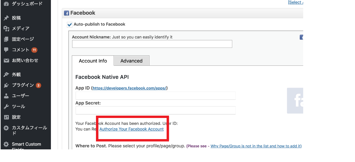 Facebook NativeAPI.png