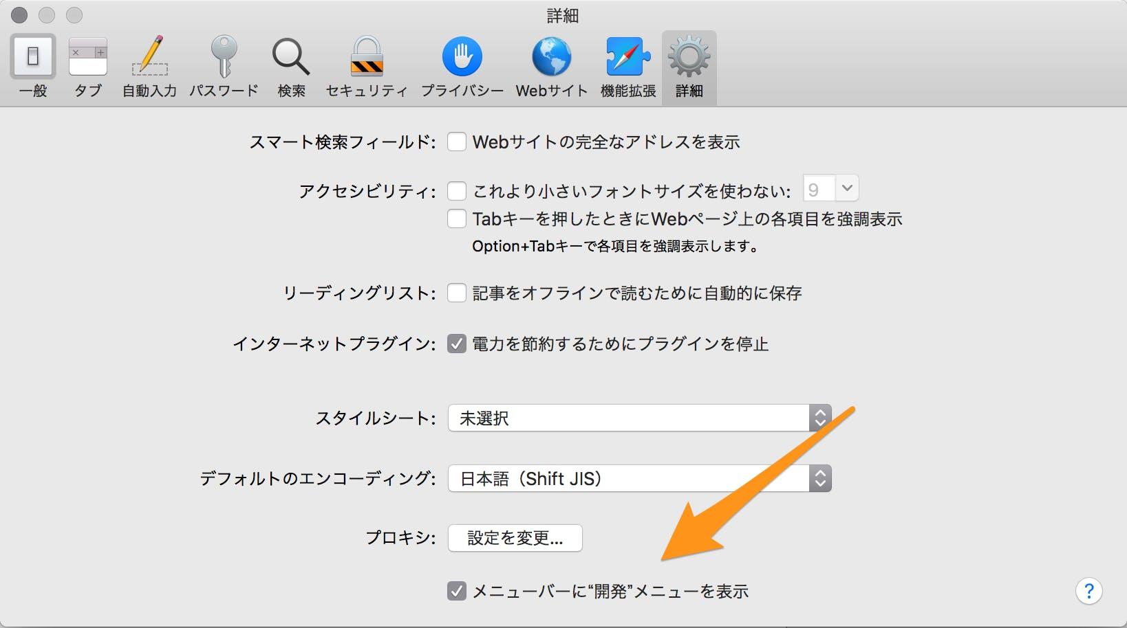 Safariの詳細設定.png