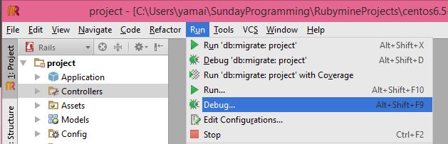 run_debug.png