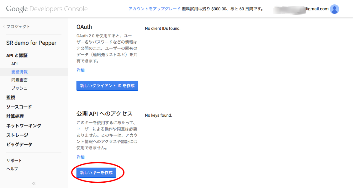 Google Developers Console 2015-02-17 12-09-38.png