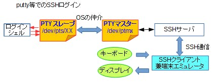 image.png