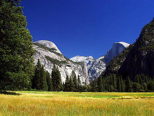 yosemite-meadows.png