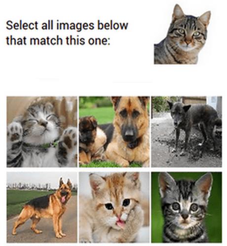 reCAPTCHA.png