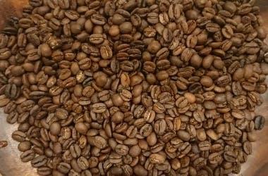coffee_beans_croped.jpg