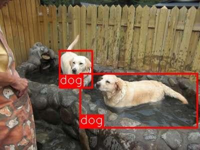 result_dog.jpg