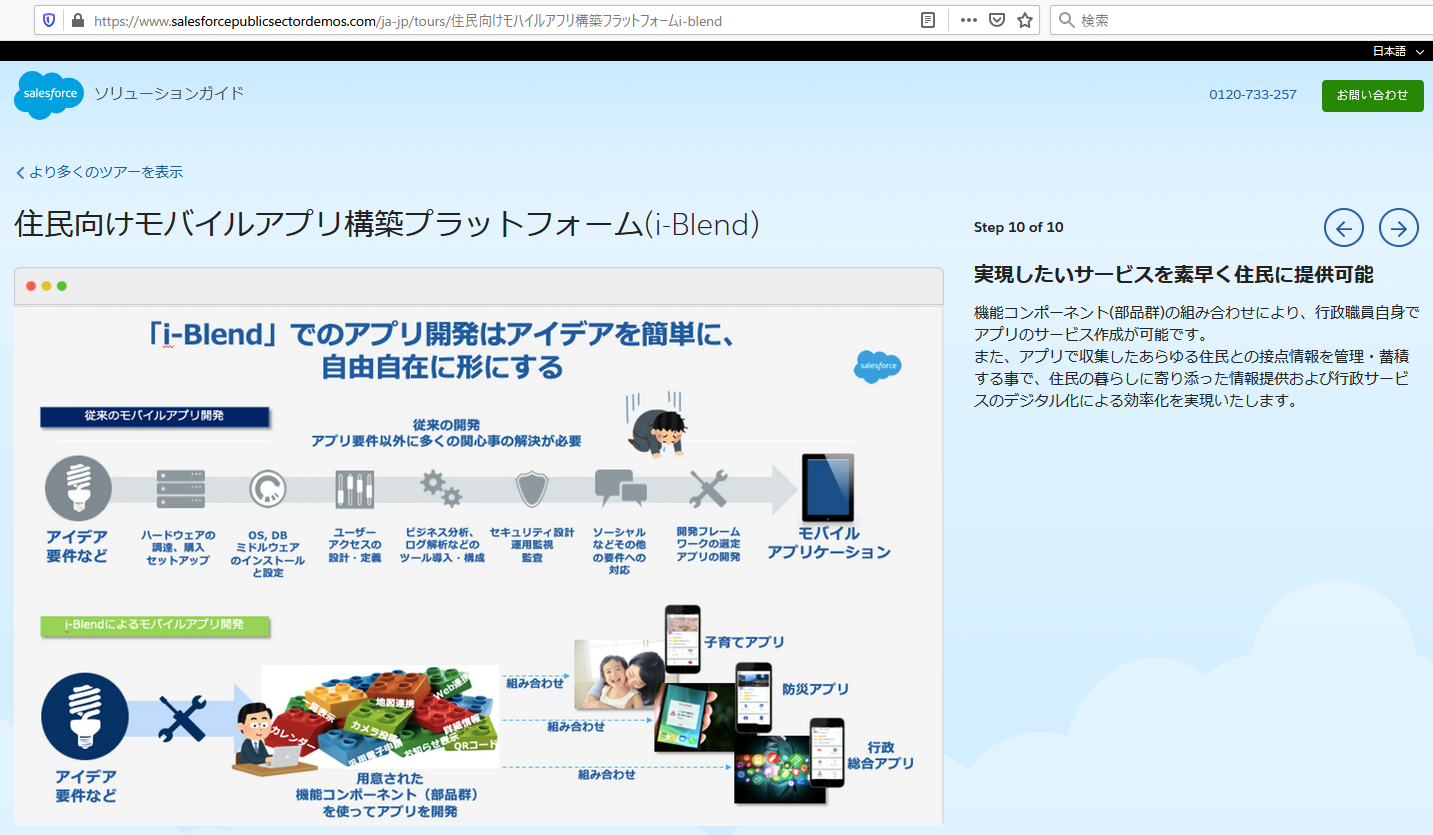 salesforce-solutionguide-p10.PNG