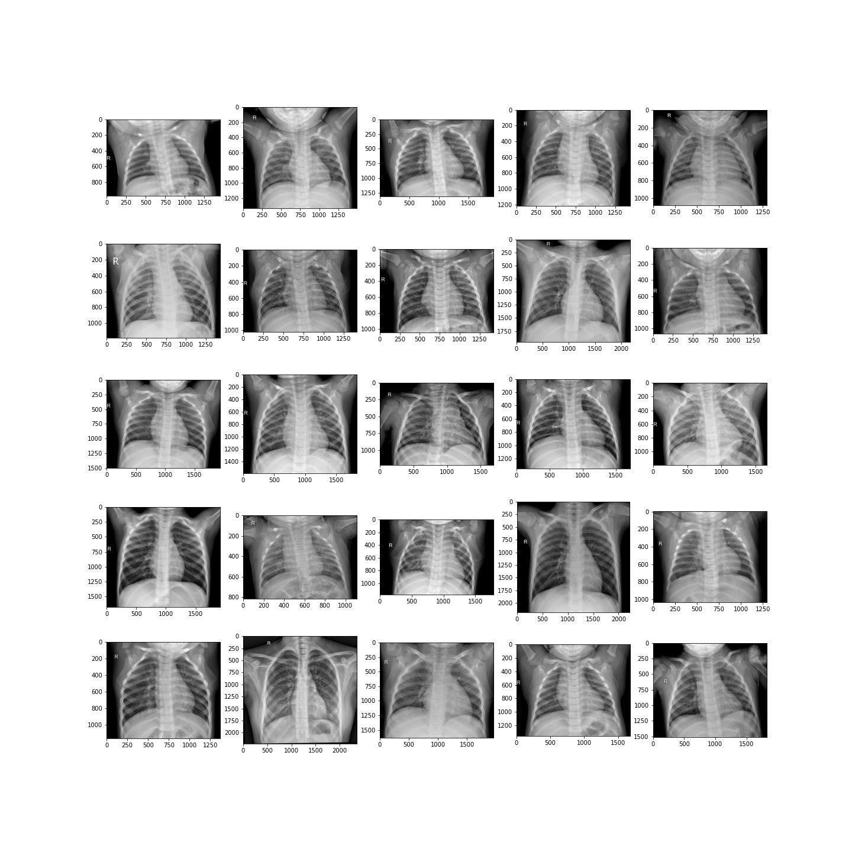 Negative_samples.jpg