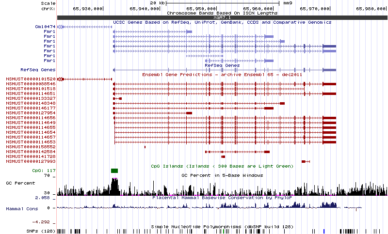 hgt_genome_408_262e50.png