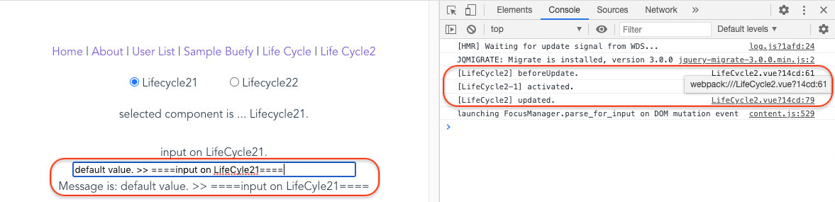 1_3_input_on_lifecycle21.png