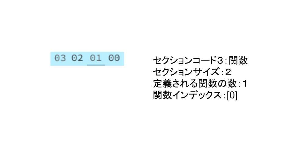 WASM (1).jpg