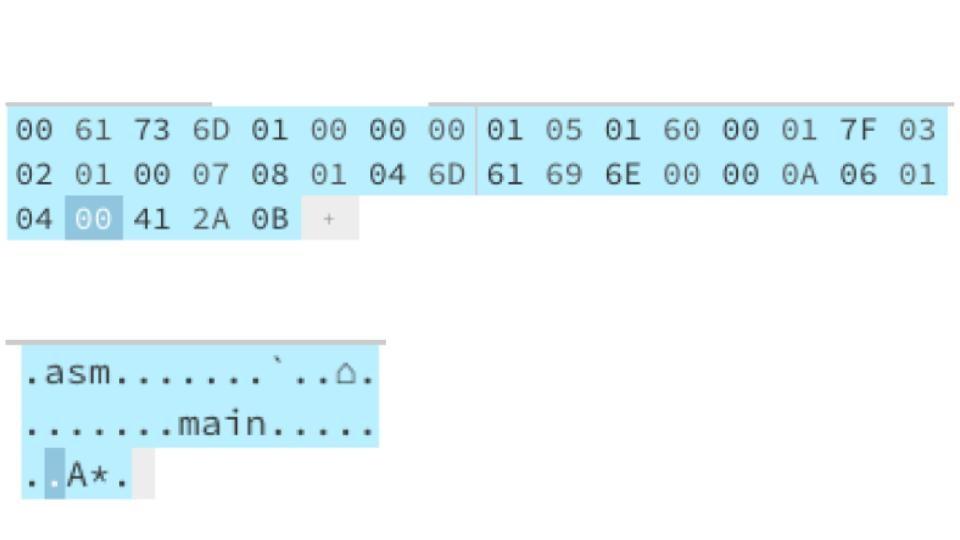 WASM (8).jpg