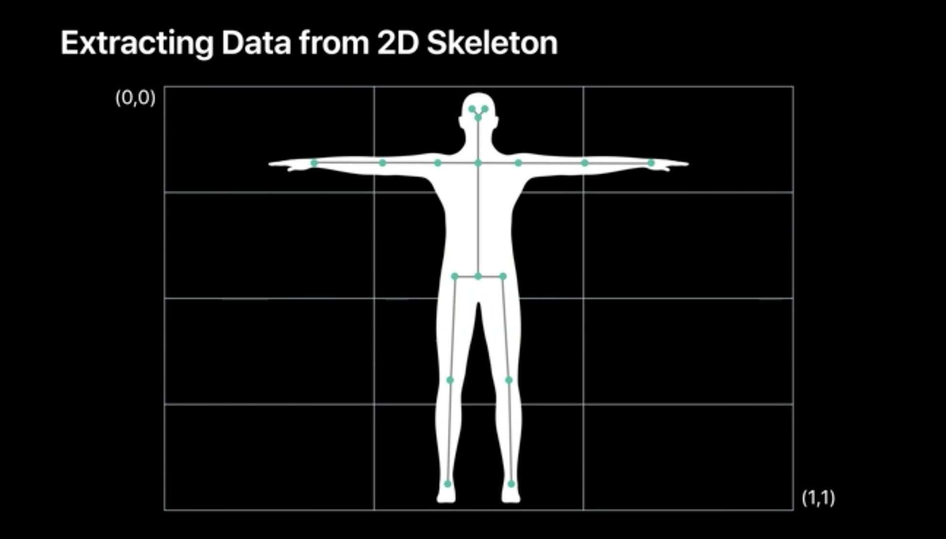 2dskeleton.png